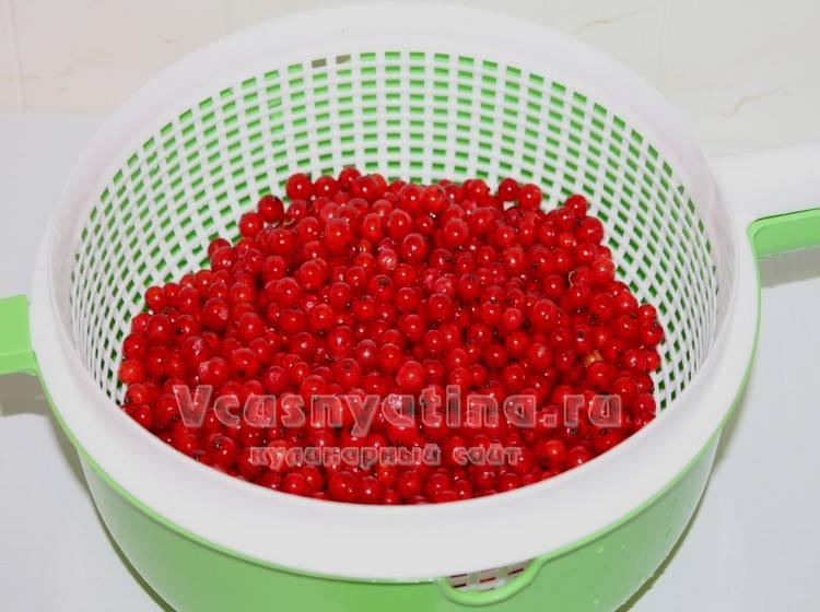 Подготовить красную смородину для компота