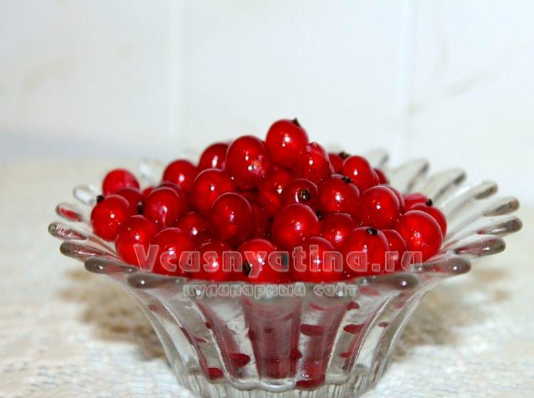 Свежую красную смородину можно заморозить