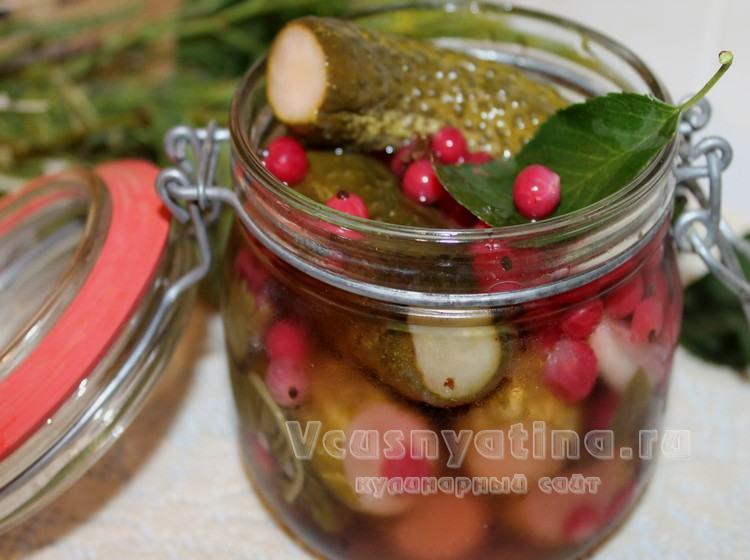 Маринованные огурцы с красной смородиной – рецепт на зиму с фото