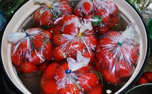 10 лучших рецептов быстрых малосольных помидоров