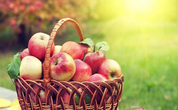 Когда наступает Яблочный Спас в 2020 году