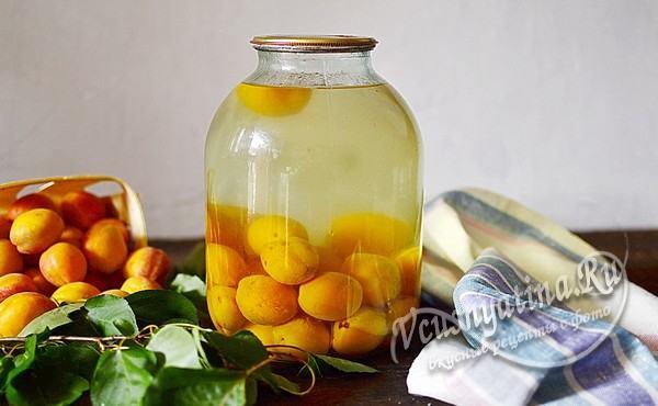 компот из абрикосов готов