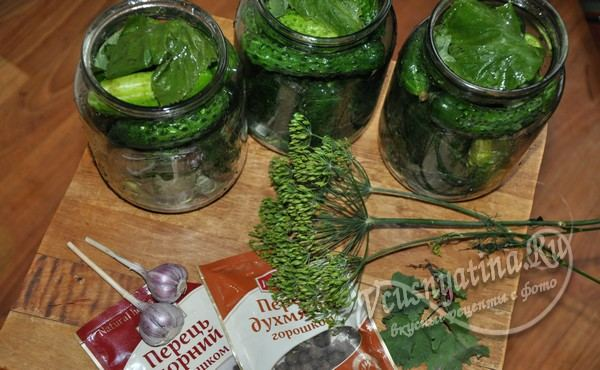 огурцы плотно сложить в банки, сверху накрыть 1 – 2 листиками смородины