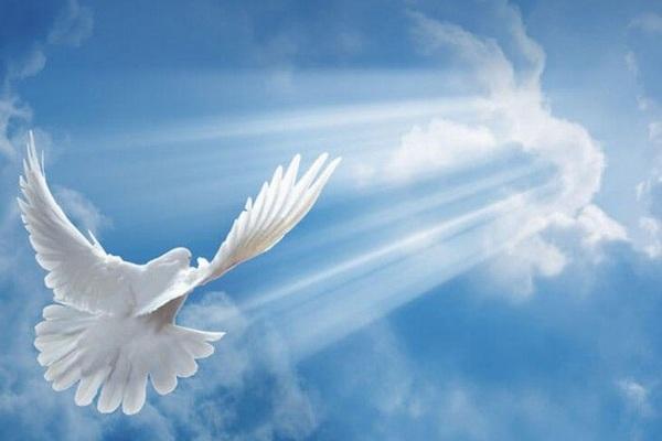 Как нужно просить прощение в Прощеное воскресенье и что отвечать