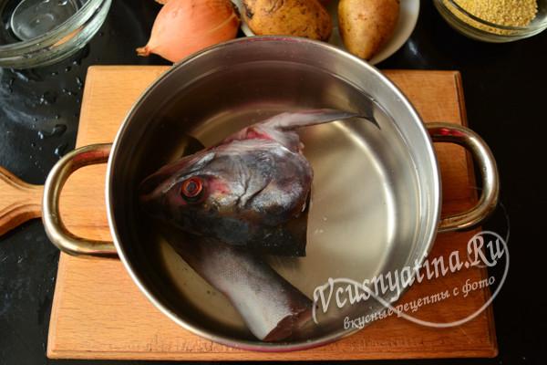 голова и хвост рыбы