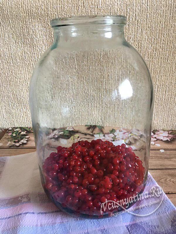 наполняем банку ягодой