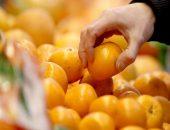 мандарин в руках