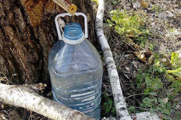 сбор в 5-литровую бутылку