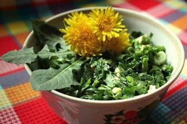 салат с крапивой и одуванчиком
