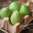 Крашеные яйца зеленого цвета