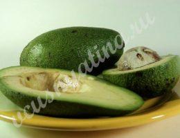 авокадо польза и вред