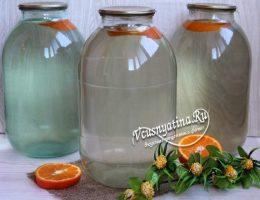 Консервация березового сока с апельсином