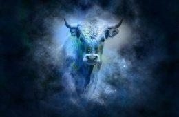 Миниатюра к статье Какого животного будет Новый год 2021 — в чем его встречать и что готовить