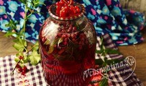 Миниатюра к статье Компот из красной смородины с мятой на зиму – рецепт на 3 литровую банку