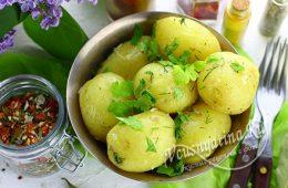 Миниатюра к статье Вкусная молодая картошечка с зеленью и маслом – пальчики оближешь!