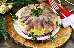 Салат сельдь под шубой с селедкой наверху