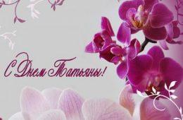 Миниатюра к статье Татьянин день в 2020 году: когда отмечают праздник в России, дата празднования