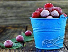 замороженная вишня на зиму
